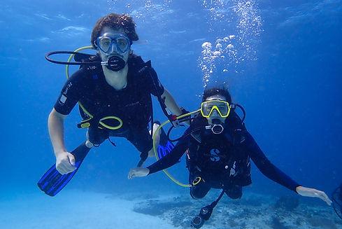 Aldora Scuba Diver image.jpg