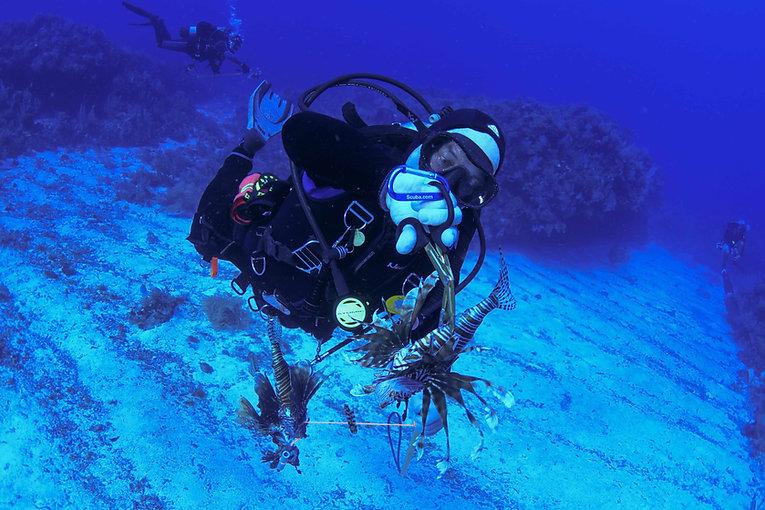 Aldora Divers Lion fish 04.jpg