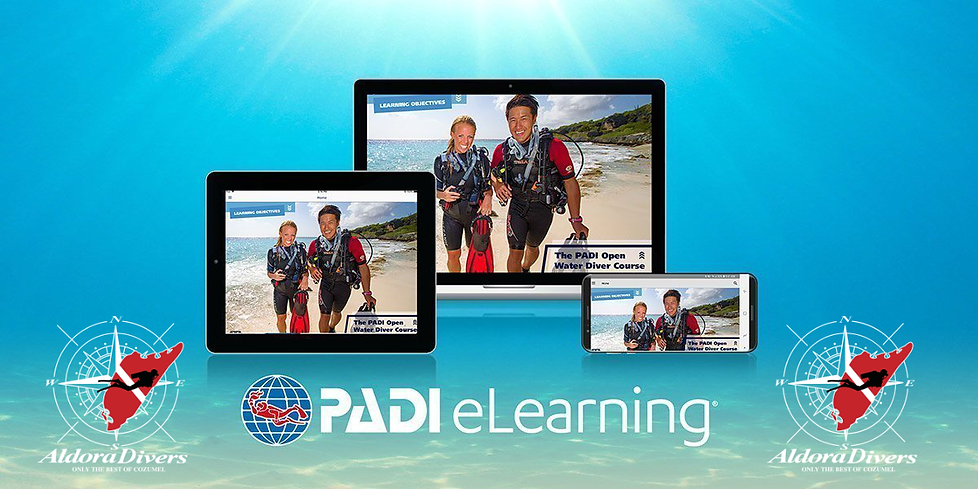 PADI E LEARNING Aldora.png