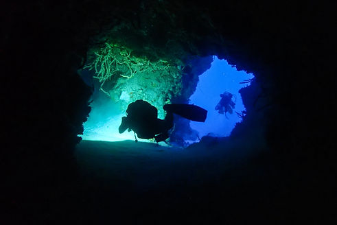 Aldora Divers Gallery 07.jpg