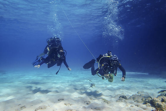 Aldora Divers Training.jpg