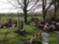 graveyard_01.jpg