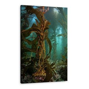 Underwater-forest.jpg