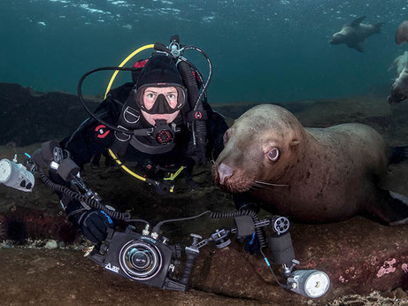 My favourite lenses for underwater photography