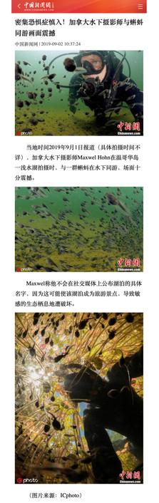 China News.jpg
