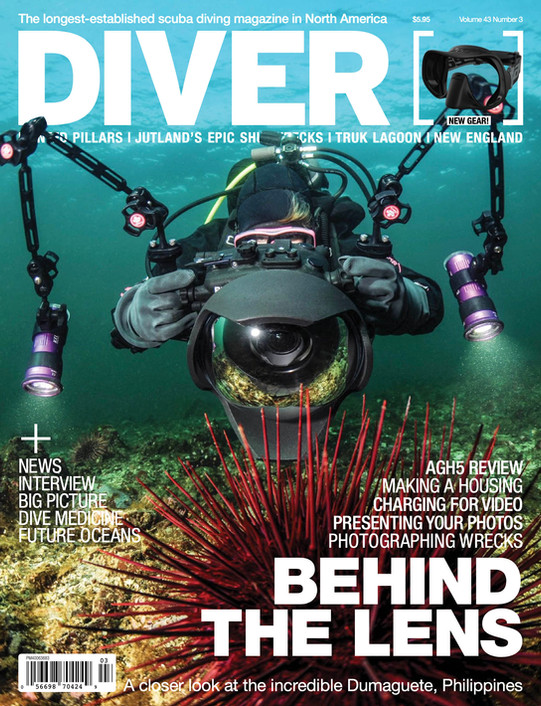 DIVER cover.jpg