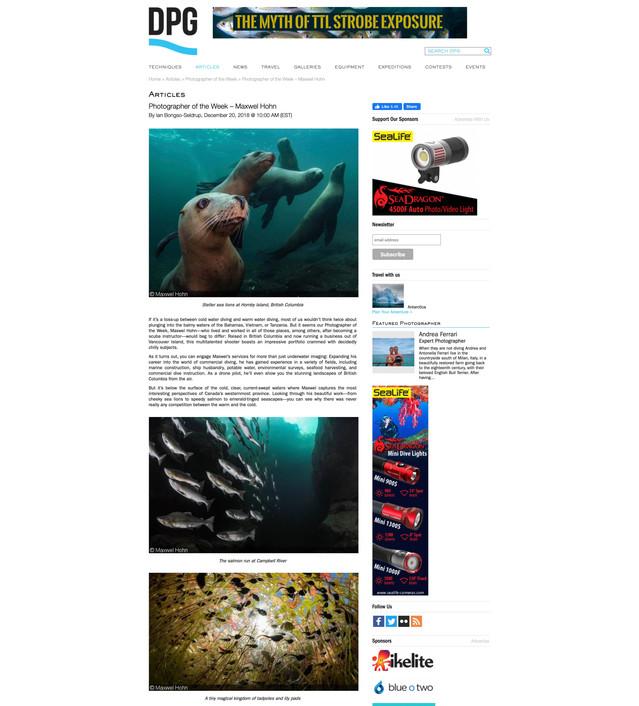 Dive Photo Guide