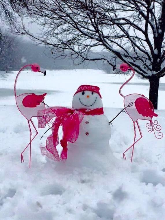 snowmingos