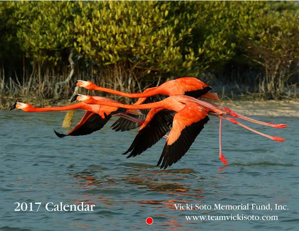 flamingocalender