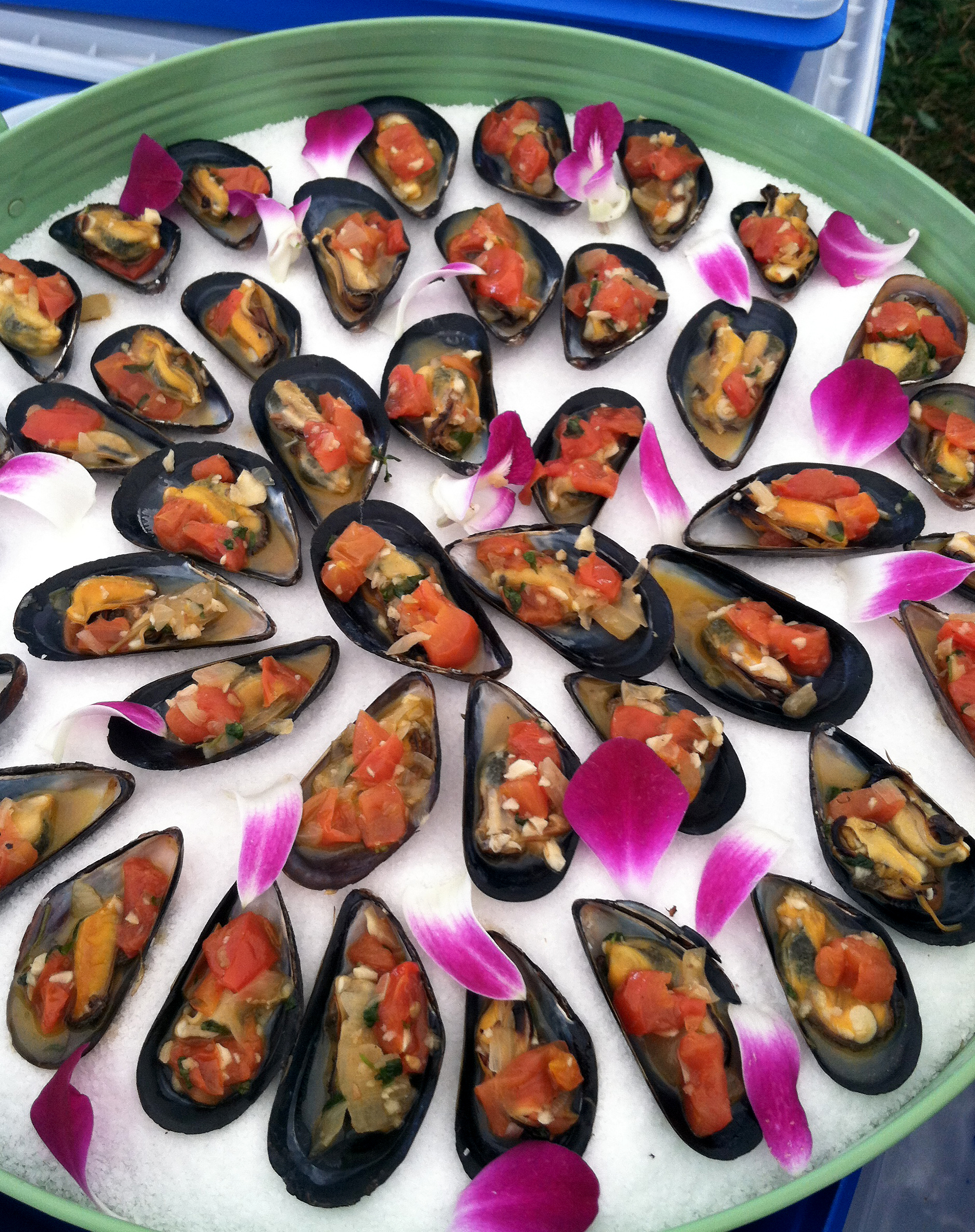 Mussels w/White Wine & Tomato