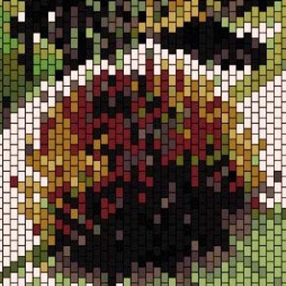 """PEYOTE BRACELET KIT 2.0"""" x 7.0"""" 16 colours"""