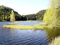 Lac ou étang-tourbière de Lispach/Région Grand Est/Département des Vosges/Commune de La Bresse
