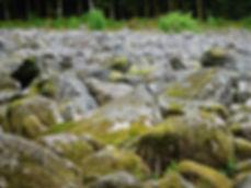 Champ de roches,Barbey-Séroux,Vosges,Grand Est,canton de Gérardmer. Rivière minérale essentiellement composée d'énormes blocs de granite,mai aussi de gré et de gneiss. Ce chaos résulterait du dépôt morainique d'un glacier de l'ère quaternaire se contractant,il y a 50000 ans environ,au cours d'une phase de réchauffement. Le champ de roches intègre le Parc Naturel Régional des Ballons des Vosges. Haut-Rhin,Haute-Saône,Vosges,Territoire de Belfort. Sud du massif vosgien,Hautes-Vosges. Vallée de Sainte-Marie-aux-Mines,portes de Belfort et de Luxeuil-les-Bains. Plaine d'Alsace,trouée de Belfort. Colmar,Mulhouse,Belfort,Bruyères,Munster,Haut-du-Them-Château-Lambert. Grand Ballon ou Ballon de Guebwiller.