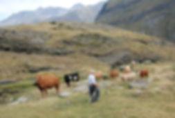 Pellegrinaggi di montagna Francia,Cirque d'Estaubé,Hautes Pyrénées,Occitanie. Autres cirques : Gavarnie,Troumouse. Principaux sommets : Grand Astazou,Pic de Pinède,Soum de Port Bieil,Pic de Tuquerouge