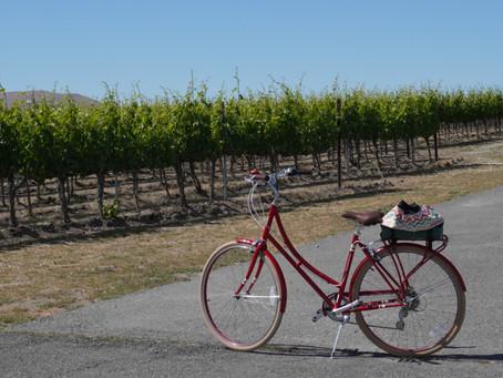 Wine Tasting by Bike Tour