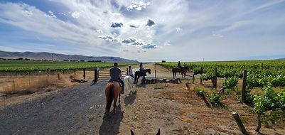 Horse back Trail Ride.jpg