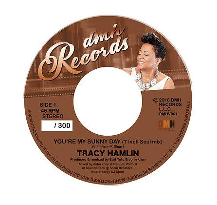 Tracy Hamlin - You're My Sunny Day