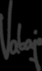 Vabajo Logo