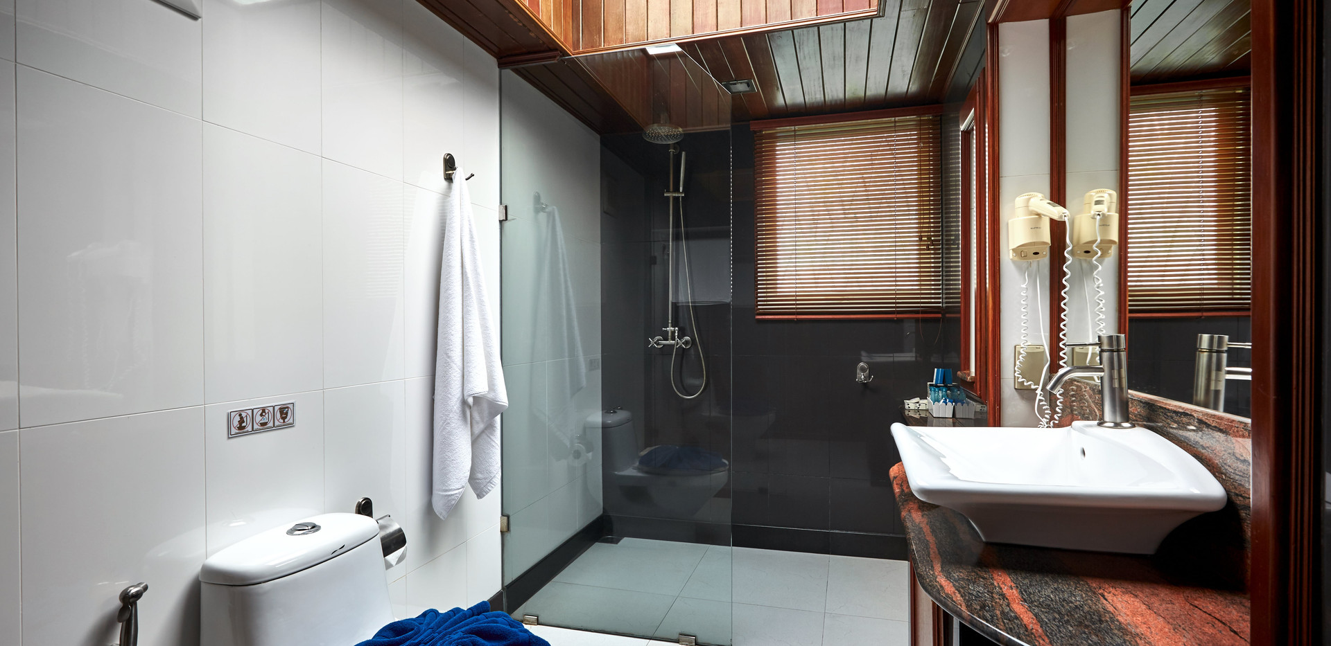 Bathroom (all rooms).jpg
