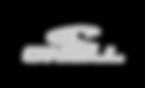 oneill_logo-gris.png