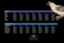 Palenque Design - tabela de medidas - manequim