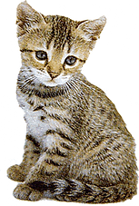 cat-clipart-04_edited.png