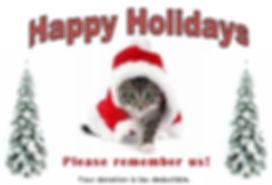 2017 Xmas website cat_edited.jpg