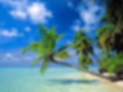 Ferienhaus in Cape Coral, Florida, USA, Ferienhaus Florida, Ferienhaus Cape Coral Florida, Ferienhaus Cape Coral Florida USA, Ferienvilla Cape Coral Florida, Ferienvilla Florida, Villa Tropical Sunbreeze, Cape Coral, Florida, Golf, Ferienhaus Cape Coral