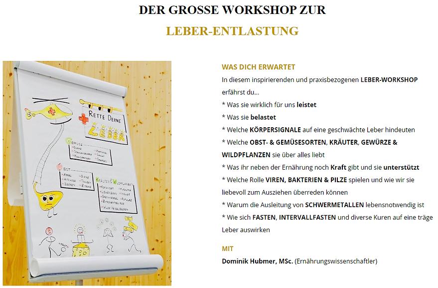 Dominik Hubmer Workshop.png
