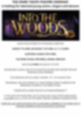 INTO THE WOODS AUDITION  POSTER .jpg