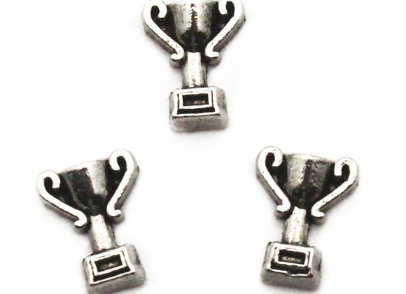 Silver Trophy Charm