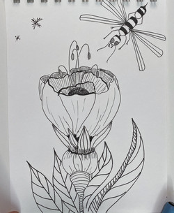 www.magicmouseart.com honey flower