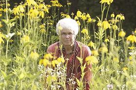 yellow cone field.jpg
