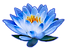 BLFRC Logo1 (2) - Copy.png