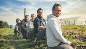 Les acteurs de l'insertion en Haute-Loire