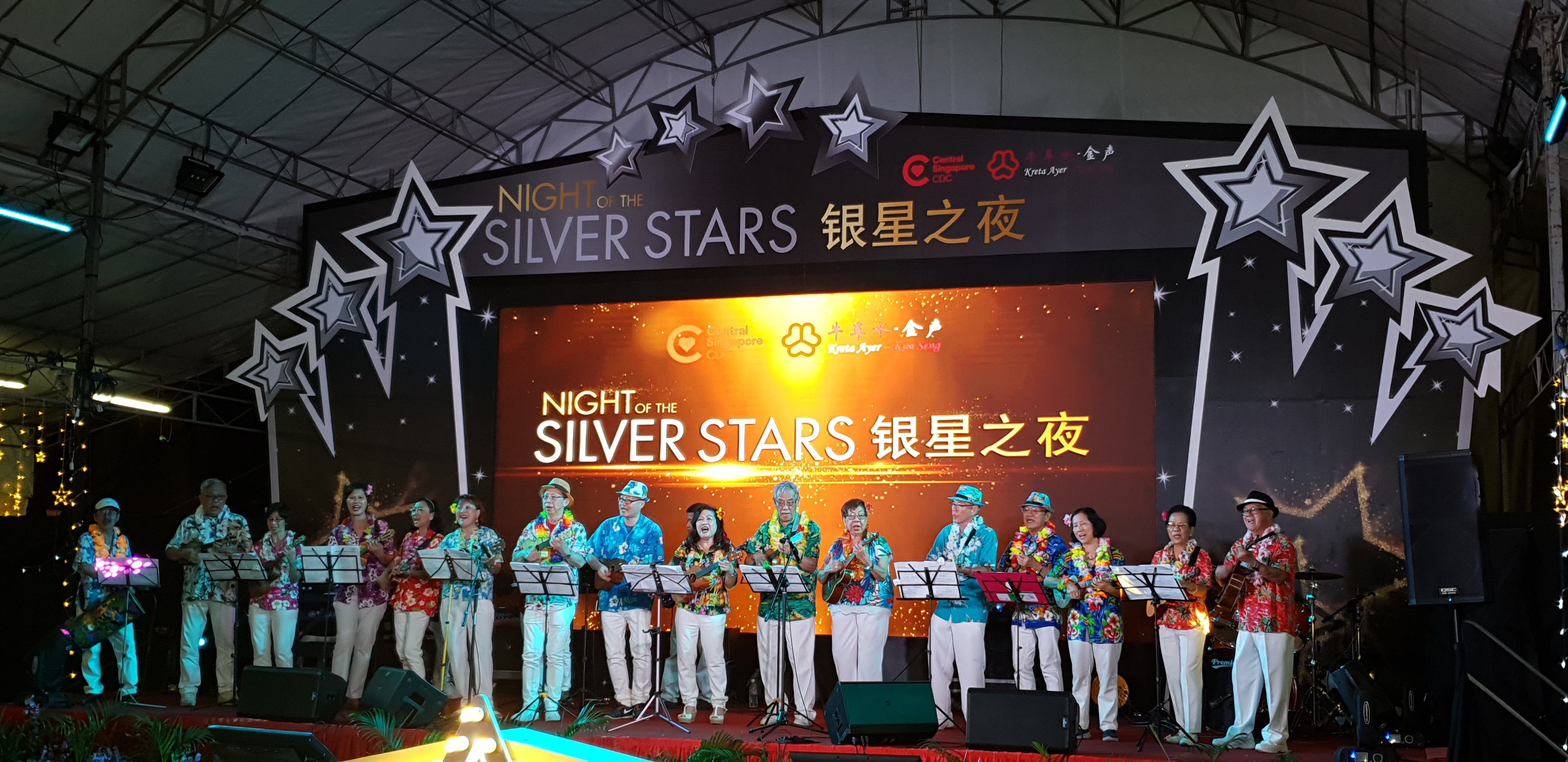 Night of Silver Stars Award 2018