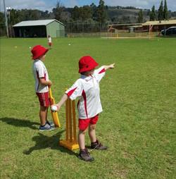 GPS T20 cricket carnival Apr 2016