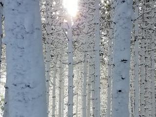Outdoor Adventures Await, Even in Winter