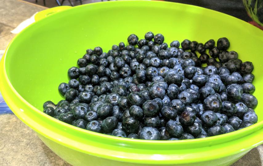 bluberrybowl