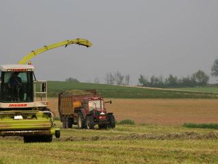 Mental Health in Rural Agricultural Communities