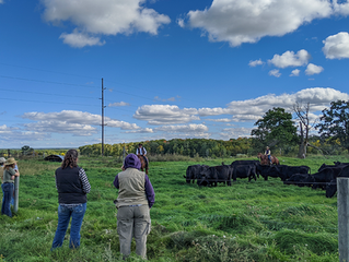 Adaptive Grazing Management in the Region