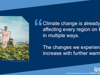 The IPCC Assessment Report and What it Means