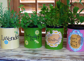 Growing Indoors: A Revisit