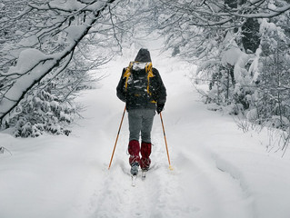 Outdoor Adventures on Snowshoes & Skis