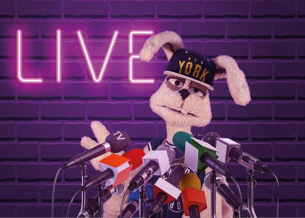 live-talk_mit-rapido.jpg