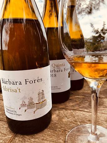 Journeys Wine.jpg