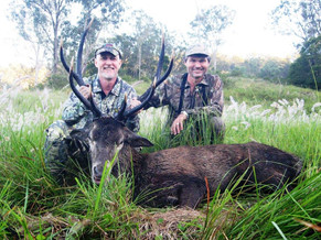 Red Deer Queensland Australia