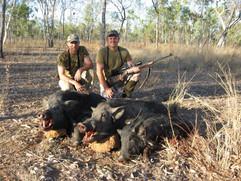 Australian Wild Boar Hunting With Downunder Taxidermy Studio & Hunting Safaris