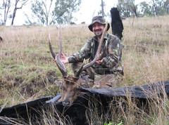 Rusa Deer Hunting In Queensland Australia