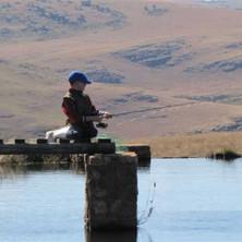 Dullstroom Trout Fishing Ponds PH Kobus Davel